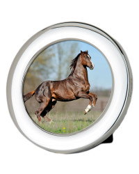 L Series – Classic plain circle silver photo frame